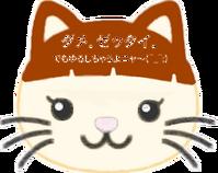 catなつ2_0129